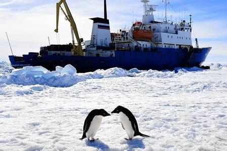 土耳其科学家前往南极探索建立科研基地